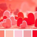красный, оранжевый, розовый, романтика, теплые оттенки